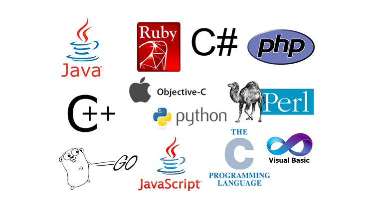 blog/cards/how-to-quickly-learn-a-new-programming-language-or-framework.jpg