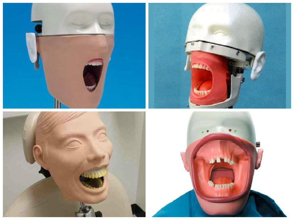 blog/dental-training-dummy.jpg